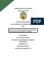 informe final de tesis 07-12-18
