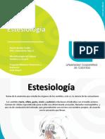 EstesiologiaR.pdf