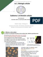 1_06_División celular