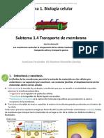 1_04_Transporte de membrana