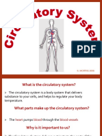 circulatory-system.pdf