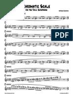Antosha Haimovich - Chromatic Scale for the Jazz Saxophone