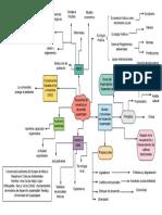 (3) Taxonomia de modelos de desarrollo sustentable