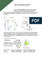 FluorescentMicroscopy221