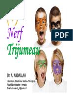nerf-trijumeau-chirdent-2012-13