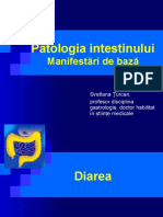 7.intestin-subtire.ppt
