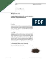 Ouriço e fenómenos biológicos.pdf