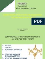 COMPONENTELE_STR_ORG_.ppt