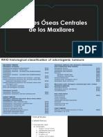 Clase Lesiones Centrales