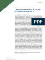 Quemaduras con cáusticos.pdf