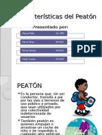 Características del Peatón