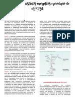 Oxidação de substratos energéticos e produção de ATP