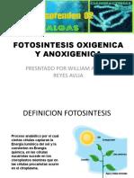 FOTOSINTESIS OXIGENICA Y ANOXIGENICA