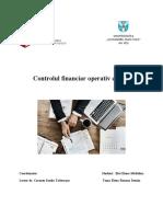 Control financiar bancar (1).docx