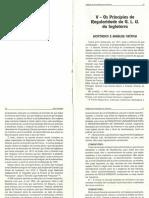 Analise da Constituição de Anderson 2