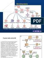 lez. 8 e 9 imm. specifica and antigen presentation.pdf