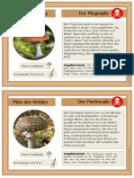 Pilze.pdf