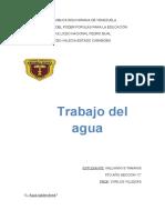TRABAJO DE AGUA C.T