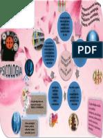 Infografia de Ps. I PDF