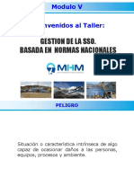GSSO-Modulo-V.pdf