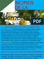 PRINCIPIOS DE LA HOMEOPATÍA