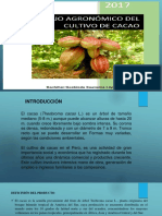 manejo-agronmico-del-cacao-171229212813