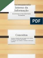 Processamento interno da informação