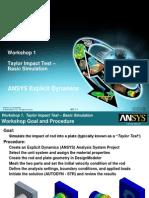 ANSYS Explicit Dynamics 120 Workshop 01