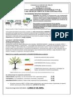 GUÍA+DE+TRABAJO+VIRTUAL+II+BIMESTRE+10°+-+CIENCIAS+POLÍTICAS+Y+ECONÓMICAS