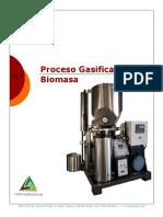 twr-proceso-de-gasificacion-biomasa.pdf