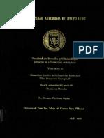 TESIS INMATERIALES.PDF
