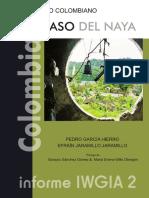 0299 El Caso del Naya informe IGIA