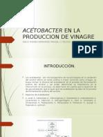 ACETOBACTER ACETI EN LA PRODUCCION DE VINAGRE