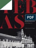 Livro- Tebas um negro arquiteto na São Paulo escravocrata (abordagens)