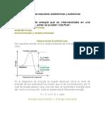 15-Características de las reacciones endotérmicas y exotérmicas