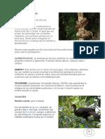 especies en peligo de extincion