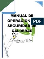 MANUAL DE LA CALDERA.doc