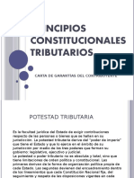 Principios Constitucionales.pptx