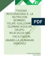 GuzmanAguilar_FelipeGuillermo_M14S3AI6