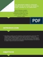segmentacion del mercado (1).pptx
