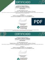 Certificado Apoyos Trabajo en Altura