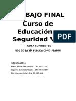 TRABAJO FINAL ED VIAL.docx