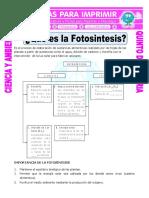 Ficha-Que-es-la-Fotosintesis-para-Quinto-de-Primaria