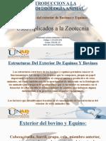 Taller De Fisiología Animal Unidad 1.pptx