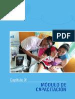 02 Modulos de Capacitacion.pdf