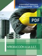 Libro del módulo TSST Introducción a la SST (1).pdf