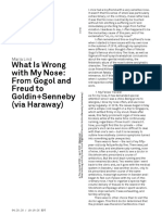 Maria Lind What Is Wrong with My Nose- From Gogol and Freud to Goldin+Senneby (via Haraway)