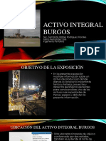 Activo integral burgos-1