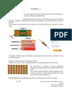 Preinforme Lab Circuitos.pdf