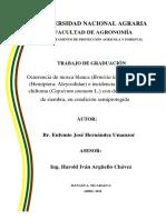 Cuido Chiltoma UNA.pdf